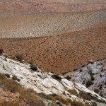 6_Atacama_Wueste